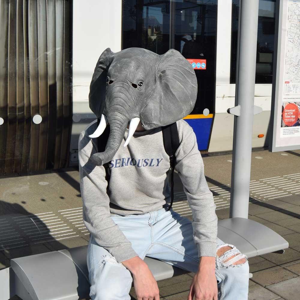 Dagaanbieding - Olifant Masker dagelijkse aanbiedingen