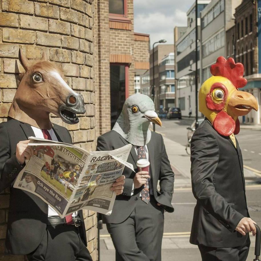 Dagaanbieding - Dieren Maskers - Horse dagelijkse aanbiedingen