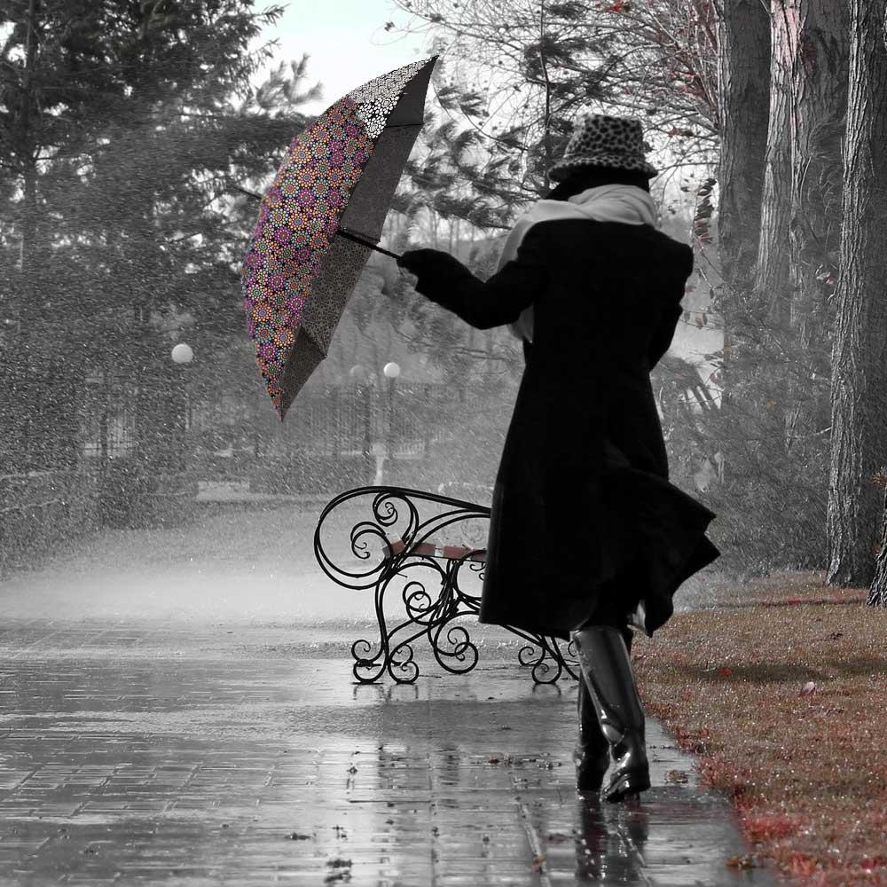 Kleur veranderende paraplu