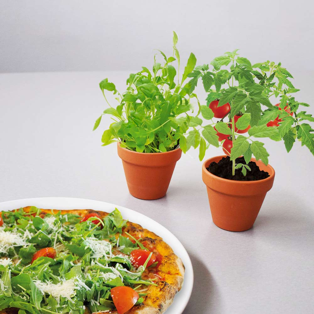 Grow your own topping - pizza