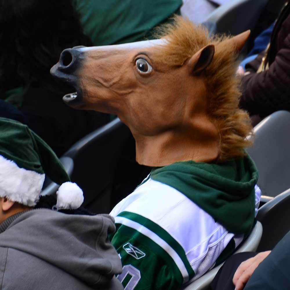 Dagaanbieding - Paardenmasker dagelijkse aanbiedingen