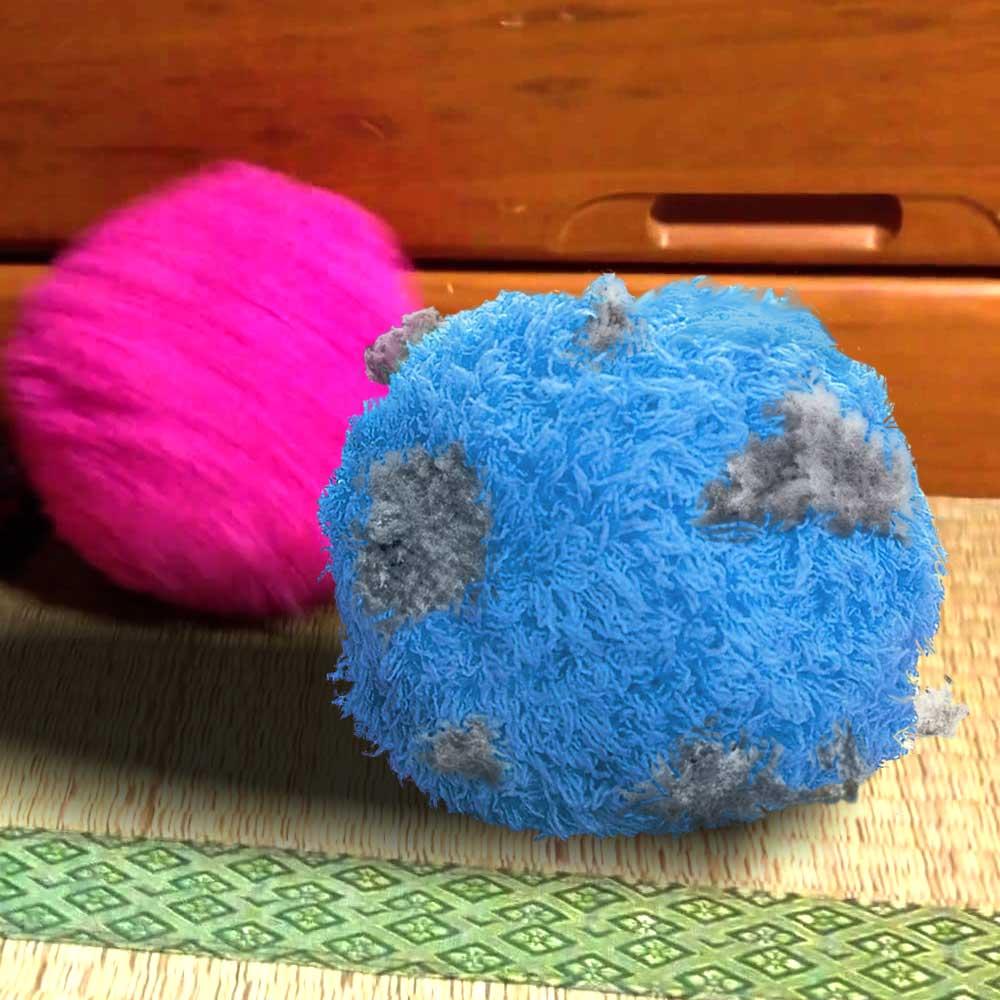 Robot cleaner bal