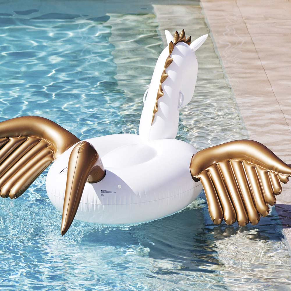 Inflateable Pegasus