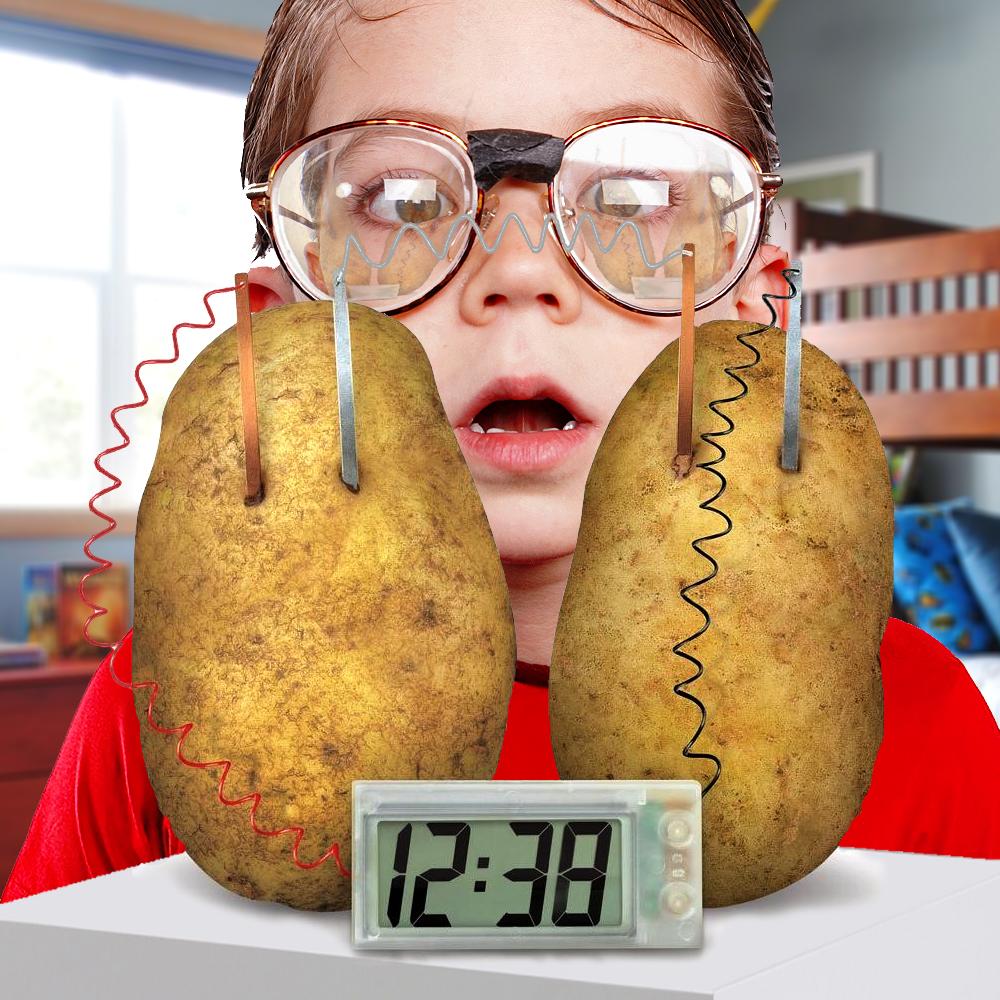 Dagaanbieding - Aardappel Klok dagelijkse aanbiedingen