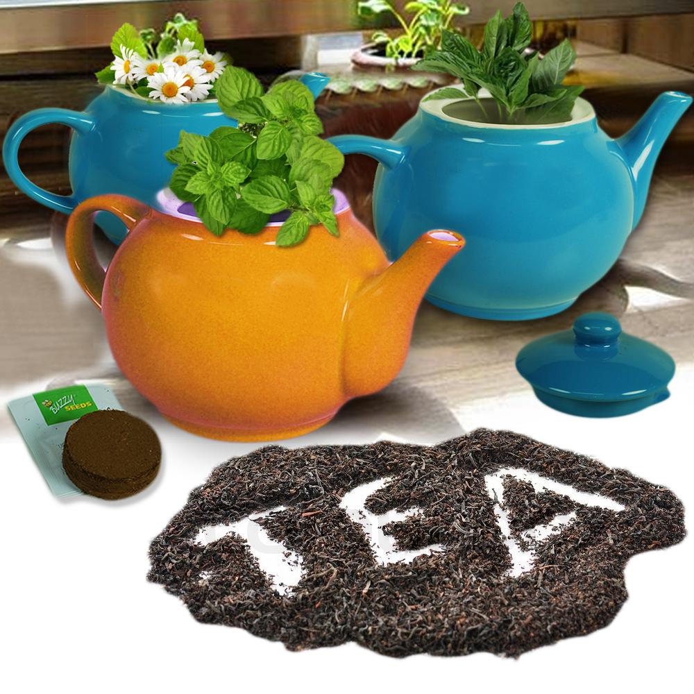Dagaanbieding - Grow your own tea giftset dagelijkse aanbiedingen